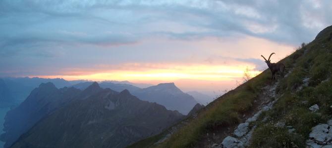 2018 08 – Berner Oberland